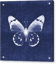 White And Indigo Butterfly 1- Art By Linda Woods Acrylic Print