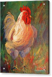 White And Red Chicken Against Green Acrylic Print