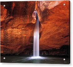 Acrylic Print featuring the photograph White Canyons by Leland D Howard