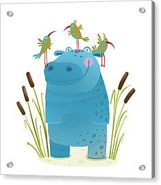 Wildlife Hippo With Cute Birds Smiling Acrylic Print