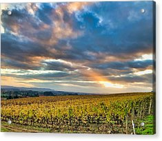 Willamette Valley In Fall Acrylic Print