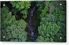 Willow Run Creek Acrylic Print