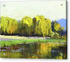 Willow Tree Reflections Acrylic Print