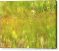 Wind Painting 4 Acrylic Print by Leland D Howard