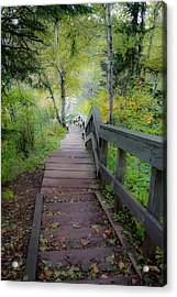 Winding Stairs In Autumn Acrylic Print