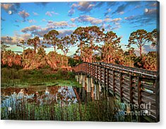 Acrylic Print featuring the photograph Winding Waters Boardwalk by Tom Claud