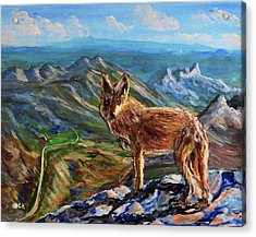 Windy Point Coyote Acrylic Print
