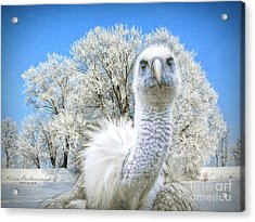 Winter Becomes Her Acrylic Print