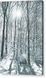 Winter Cold Acrylic Print by JAMART Photography