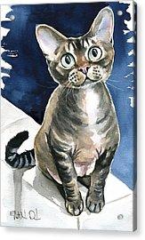 Winter Devon Rex Cat Painting Acrylic Print
