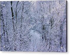 Winter Ice Storm Acrylic Print