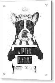 Winter Is Boring Acrylic Print