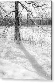 Winter Simple Acrylic Print