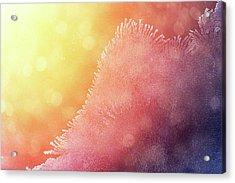 Winter Sunrise Through Icy Window Acrylic Print by Mammuth