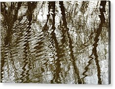Winter Water Reflection - 5059-19 Acrylic Print