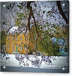 Acrylic Print featuring the photograph Winter White by Don Moore