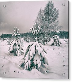 Winter's Coming. Horytsya, 2018. Acrylic Print