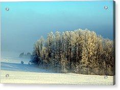 Winter's Heavy Frost Acrylic Print