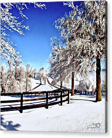 Wintry Lane Acrylic Print