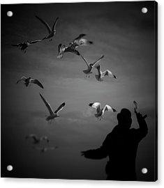 Wizard Flewing Away Birds Acrylic Print