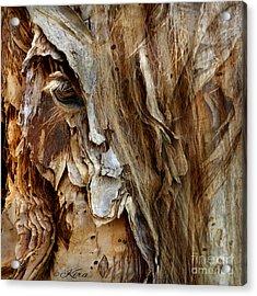 Wood Witch Acrylic Print