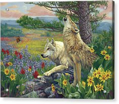 Wolves In The Spring Acrylic Print