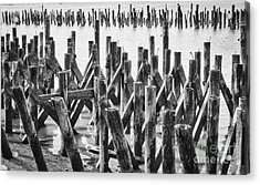 Wooden Piling Abstract Acrylic Print
