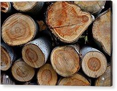 Wooden Textures  Acrylic Print