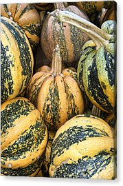 Yellow And Green Pumpkins Acrylic Print