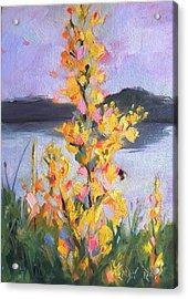 Yellow Blaze Acrylic Print