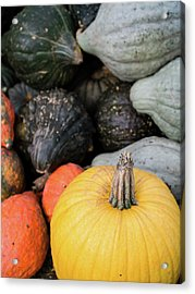 Acrylic Print featuring the photograph Yellow Pumpkin by Whitney Leigh Carlson