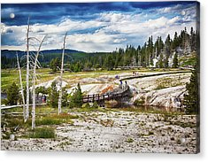 Acrylic Print featuring the photograph Yellowstone Trails In The Geyeser Basin by Tatiana Travelways