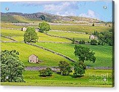 Yorkshire Dales Acrylic Print