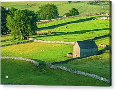 Yorkshire Dales Near Malham Acrylic Print by David Ross