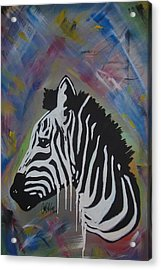 Zebra Drip Acrylic Print