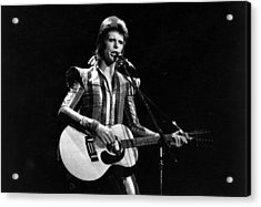 Ziggy Plays Guitar Acrylic Print