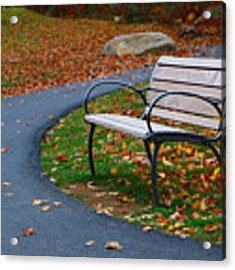 Bench On The Walk Acrylic Print by Rick Morgan