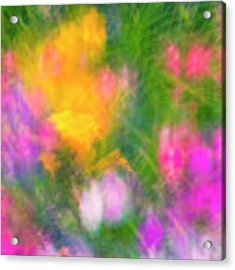 Summer Impression Series Panorama - Flowers Acrylic Print by Ranjay Mitra