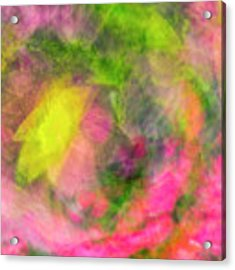 Impression Series - Floral Galaxies Acrylic Print by Ranjay Mitra