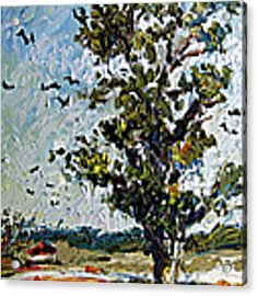 A Tree On My Way Acrylic Print by Ginette Callaway