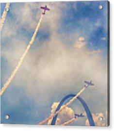 Arch Flight Acrylic Print by Susan Rissi Tregoning