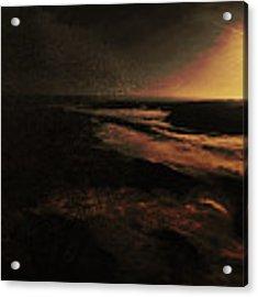 Beach Tree Acrylic Print by Richard Ricci