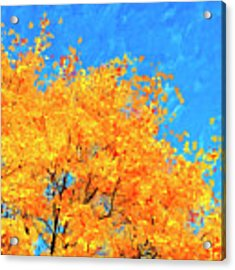 The Power Of Color Acrylic Print by Mark Tisdale