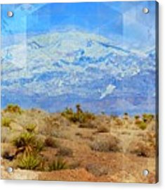 Desert Contrasts Acrylic Print by Michelle Dallocchio