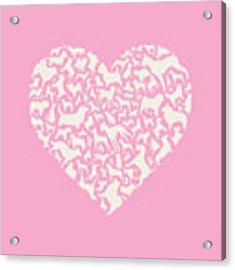 Dog Valentine Acrylic Print by Mitch Frey