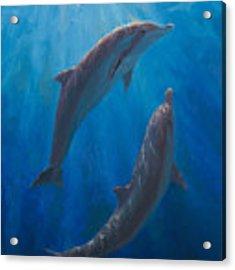 Dolphin Dance - Underwater Whales - Ocean Art - Coastal Decor Acrylic Print by Karen Whitworth