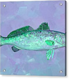 Fanciful Lavender Mint Sea Trout Acrylic Print by Shelli Fitzpatrick