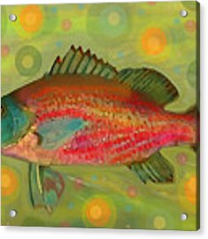 Fanciful Pink Snapper  Acrylic Print by Shelli Fitzpatrick