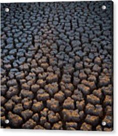 Fire Cracks Acrylic Print by Emily Dickey