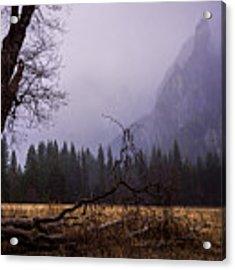 First Snow In Yosemite Valley Acrylic Print by Priya Ghose